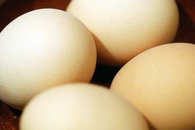 Lesson 23 - Cooking with Eggs