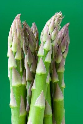 Close up of uncooked green asparagus on a green background.