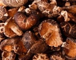 mushrooms_umami